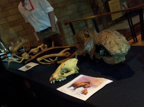 Prehistoric bones - natural History Museum