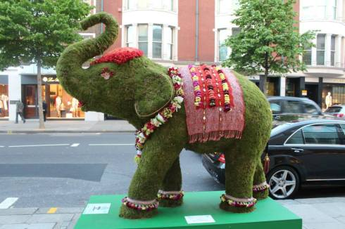floral elephant - Sloane street