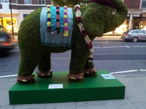 This elephant is by the @elephantfamily charity to highlight endangered Elephants