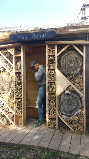 Mr L decided to take a phonecall at the bug hotel